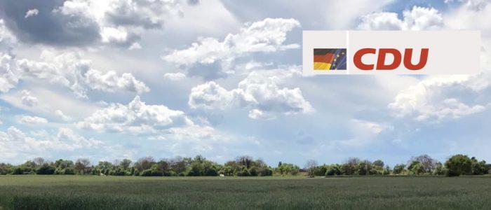 Blick auf grüne Felder westlich von Büchenau
